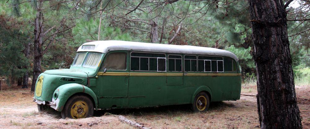 1.047 días, 1.047 buses mágicos