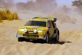 095 - Paris Dakar 1987. Zanussi/Arena. Peugeot 205 Turbo 16.