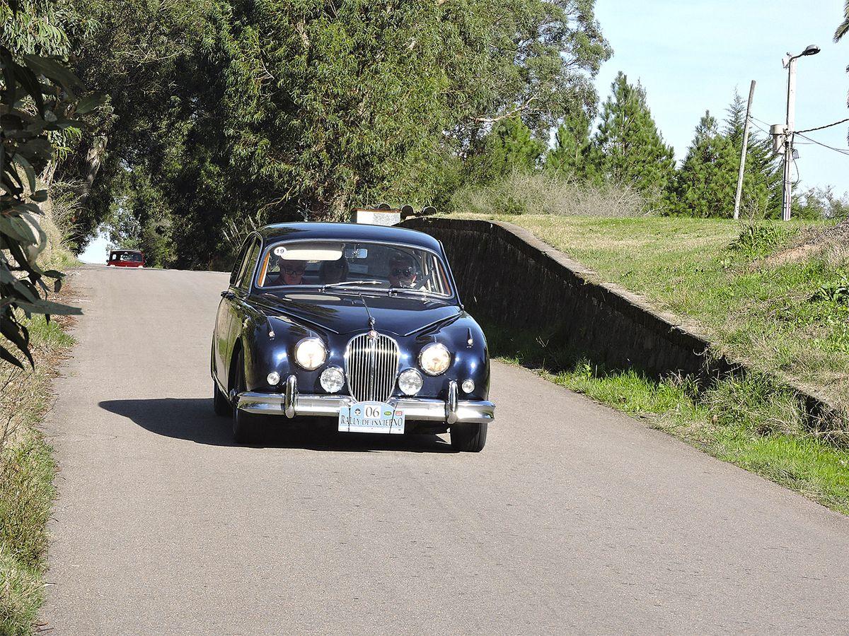 Jaguar - Cno Buxareo