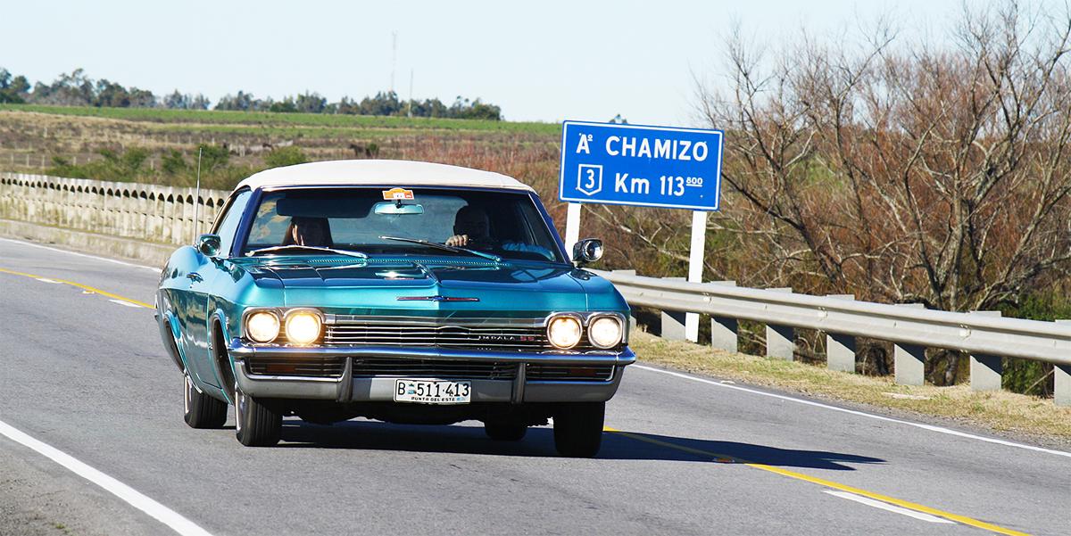 Impala Ao Chamizo